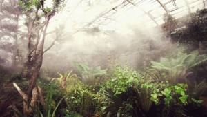 Proměna skleníku Fata Morgana pokračuje, novou tvář bude mít horská část