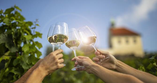Víno, burčák a výběr delikates si vychutnáte na vinici sv. Kláry příští víkend