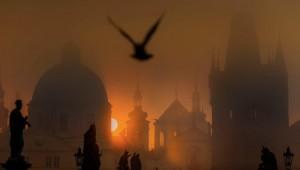 Ščí jak sviňa, Praha tajemná. Tyto a další krásné obrázky bodovaly ve fotografické soutěži. Jdete letos do toho?