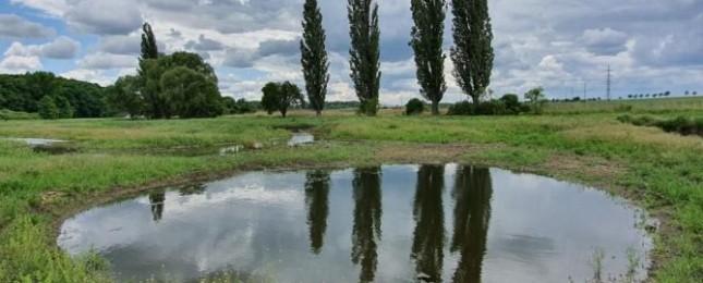 Na místě tří menších rybníků vznikl nový Lítožnický rybník